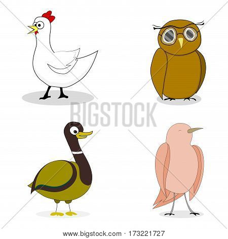 Set of birds vector character duck and chicken nightingale and owl illustration