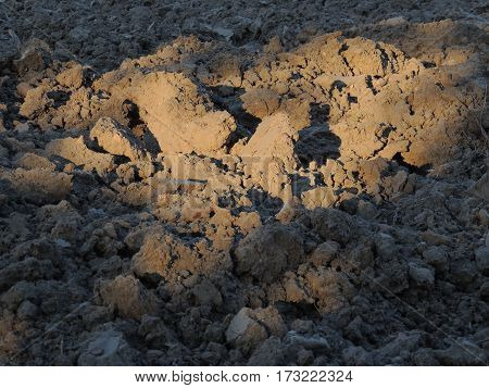 Lumps of plowed soil in the field