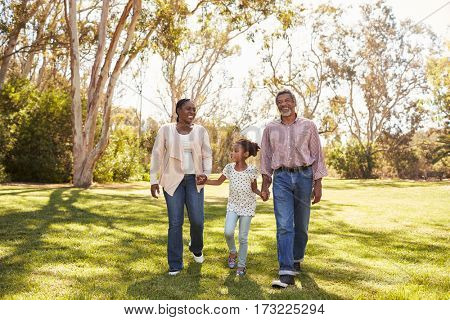 Grandparents And Granddaughter Walking In Park Together