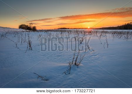 Beautiful Sunset With Ice Covered Grass At Winter Season.