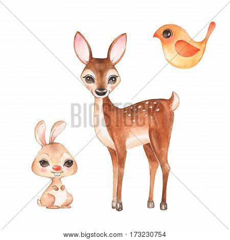Hand drawn cute fawn bunny and bird. Cartoon illustration isolated on white. Watercolor set