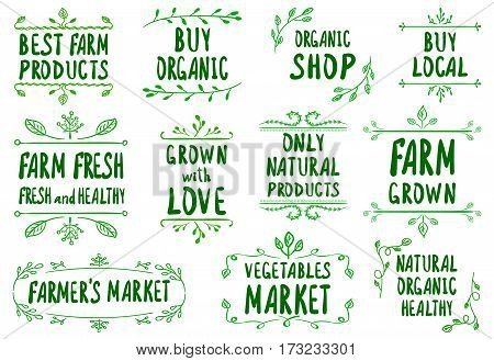 VECTOR hand-sketched green farmer's market label templates, collection of labels