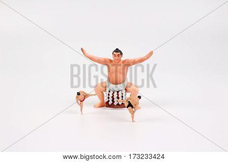 The Tiny Of Sumo Wrestler