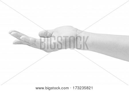 black and white closeup of a cradling hand of a female isolated on white background.