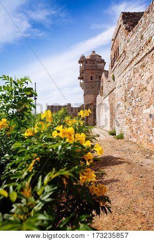 Maharana Kumbh Palace (mahal) At Chittorgarh Fort, Chittorgarh, India