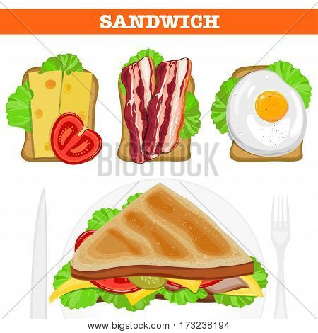 Set of various sandwiches. Sandwiches wiht omelet, bacon, cheese vector illustration.