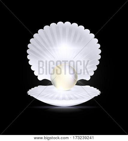 black background with the large white open shell and the big light pearl inside