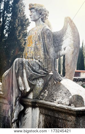 The serious stone angel sitting on the tomb looks straight