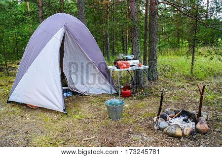 Tourist tent and field kitchen on the shore of the Gulf of Finland on the background of pine forest.
