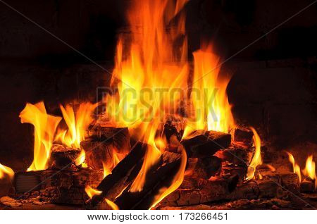 Bright flame of burning woods. burning logs with fire flames
