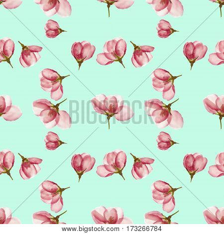 Apple blossom. Texture of flowers. Seamless pattern for continuous replicate. Floral background photo collage for production of textile cotton fabric. For use in wallpaper covers.