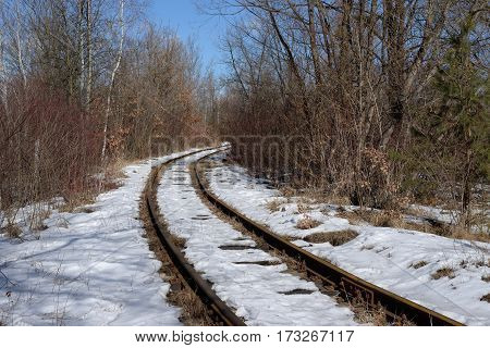 Old rusty railroad among the trees and bushes