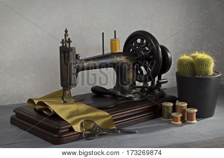 Vintage sewing machine with scissors, threads and cactus