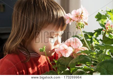 Little girl smelling spring flowers kid feeling happinessjoyful people concept without spring allergy