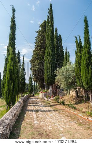 Dirt road through mediterranean countryside edged by stone wall between olive and cypress trees with deep blue sky