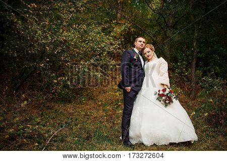 Wedding Couple In Love At Autumn Pine Wood.