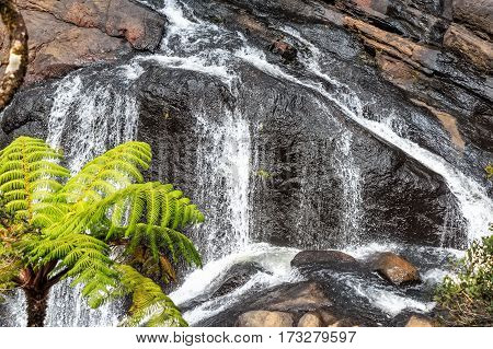 Bakers Falls in Horton plains, Sri Lanka. The height of Baker's waterfalls is 20 Metres and the falls were named after sir Samuel Baker, who was a famous explorer.
