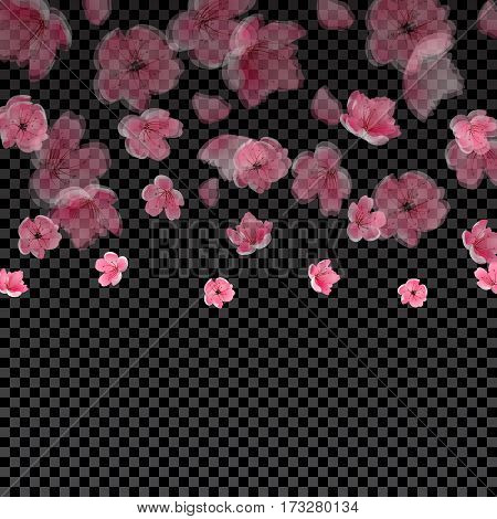 Flying semi transparent petals and cherry blossoms. On Checker background. Vector illustration
