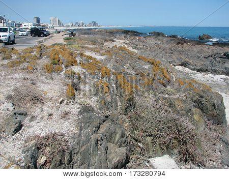 Rocky coastal landscape BLOUBERG STRAND, CAPE TOWN SOUTH AFRICA