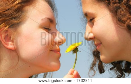 Girls With Dandelion