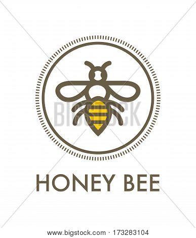 Honey Bee Creative Vector Sign Concept Dedign Element.