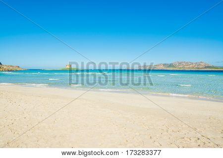 White sand in La Pelosa beach Sardinia