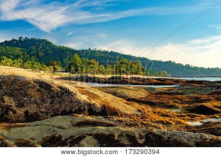 Beautiful seascape with sea and rock in Nang Thong Beach, Khao Lak, Thailand. View of bright blue sea with protruding stones with picturesque growing algae on them. Nature composition.