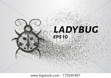 Ladybug Of Particles. Ladybug Consists Of Circles And Points. Vector Illustration