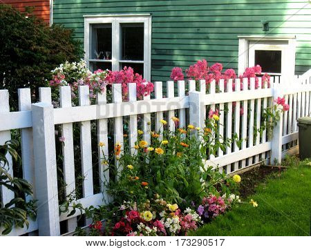 Fence Between Colorful Houses Tended by Friendly Neigbors
