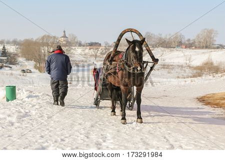 Old Horse Harnessed To The Sled In The Snow With A Sunny Day