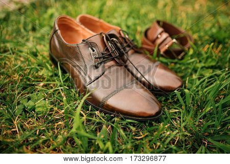 Brown Leather Men's Casual Shoes With Belt On Green Grass. Groom Accessories.