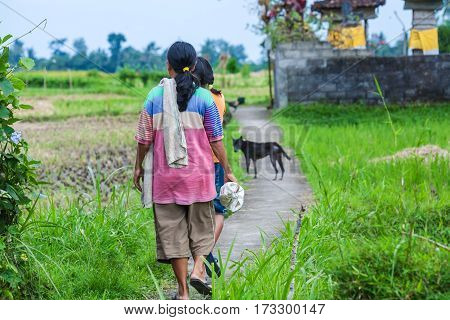 Bali, Indonesia - August 27, 2008: Two Girls And Dog Walk On A Rice Field In A Traditional Village