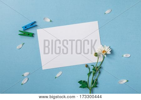 Spring top view composition: blank stationary template / invitation mockup scattered petals around green and blue clothespins white flower with green stem. Sky blue background with copy space for text. Flat lay.