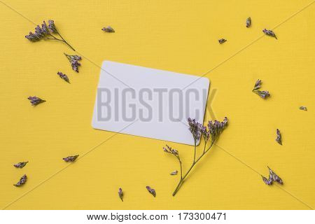 Spring or summer background with copy space for text: business / credit / visiting card mockup rustic violet small flowers. Top view. Flat lay.