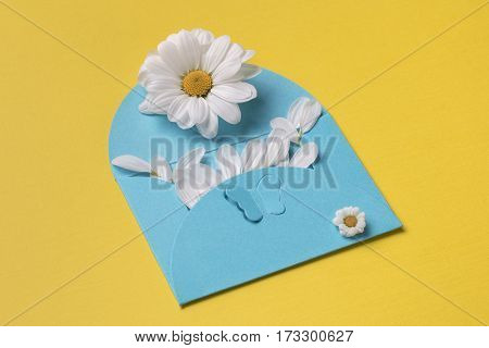 Spring or summer composition with copy space for text: cyan envelope with butterfly contains small petals white flower with yellow heart and small chamomile. Top view.