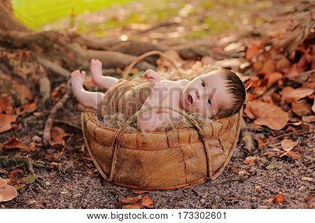 An alert two week old newborn baby boy lying in an organic basket. Shot outdoors in fall foliage.