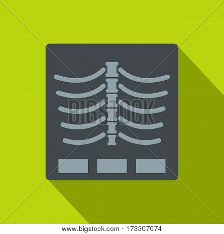 X Ray photo icon. Flat illustration of x ray photo vector icon for web