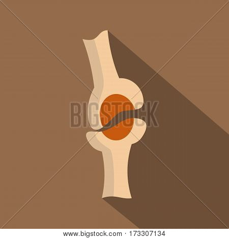 Knee joint icon. Flat illustration of knee joint vector icon for web