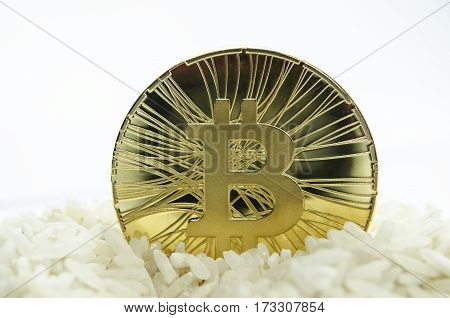 Shiny Gold Bitcoin Coin Laying In Chinese Rice
