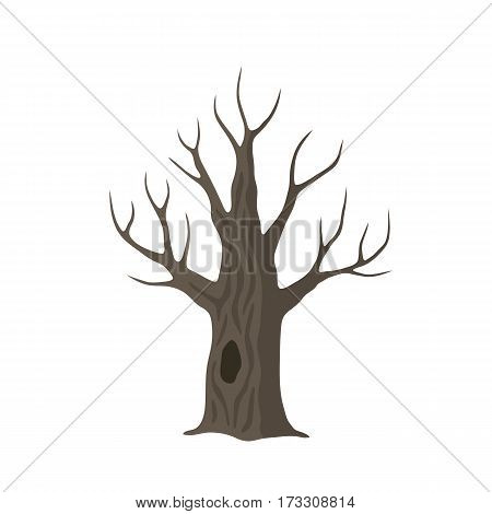 Vector flat dead old tree isolated. Brown oak tree with hollow on white background.