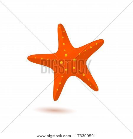 Starfish cartoon vector icon. Sea star illustration