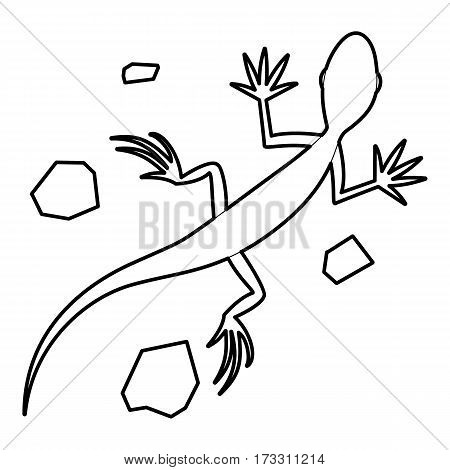 Salamander icon. Outline illustration of salamander vector icon for web