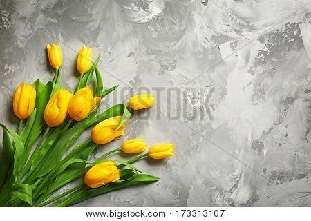 Yellow beautiful tulips on gray background