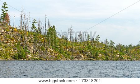Fire Scarred Ridge in the North Woods on Knife Lake in Quetico Provincial Park