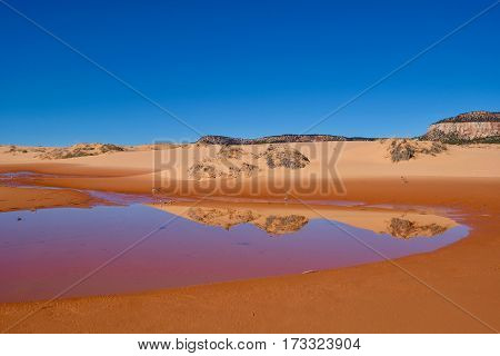 Perfect reflection of sand dunes in calm water. Coral Pink Sand Dunes State Park. Kanab. Cedar City. Utah. Unated States.