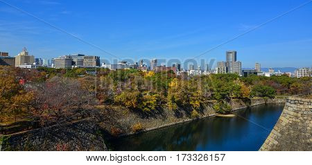 Autumn Scenery At The Sunny Day