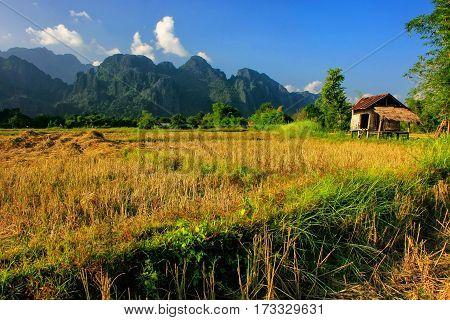 Farmer's Hut On A Field In Vang Vieng, Vientien Province, Laos
