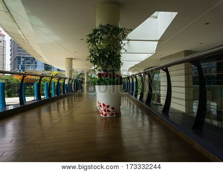A big white pot with tree in the middle of hall at Central Park Mall photo taken in Jakarta Indonesia java