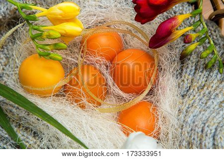 Easter colored eggs on gray knitted background with flowers of freesia, spring mood