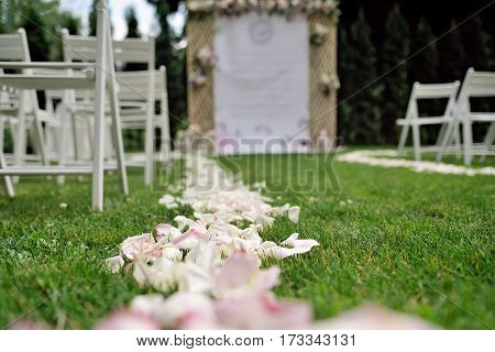 Rose petals on grass, in front of beautiful wedding trellis decorated with white, purple and pink flowers and congratulation on banner, outdoor